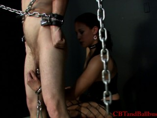 CBT punkass gets a good cock and ball beating